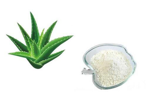 Aloe vera gel freeze-dried powder - xuhuang.jpg